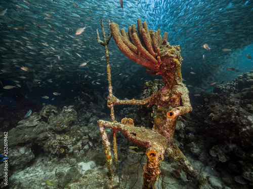 Seascape of coral reef in the Caribbean Sea around Curacao at dive site Playa Gr Wallpaper Mural