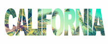 Word California With Palm Trees On White Background