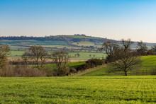 English Countryside , Warwickshire,UK In Late Winter