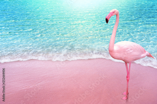 Vászonkép pink flamingo bird sandy beach and soft blue ocean wave summer concept backgroun