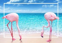 Two Pink Flamingo On Sandy Beach And Soft Blue Ocean Wave Summer Concept Background