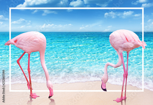 Garden Poster Flamingo two pink flamingo on sandy beach and soft blue ocean wave summer concept background