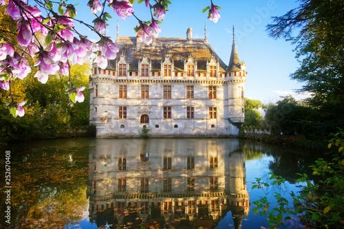 Obraz Azay-le-Rideau castle, France - fototapety do salonu