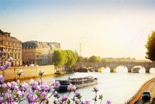 Pont Neuf, Paris, France Fototapeta