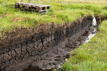 Trench Cut Into Deep Peat Of W...