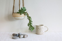 Hanging Succulent Plant With Small Watering Pitcher And Striped Rocks