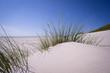 Sanddüne an der Nordsee