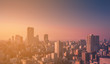 Blur image for background : skyline cityscape at sunset