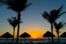 Silhouette Of Tropical Thatch Umbrella And Coconut Trees In The Beach During Sunrise