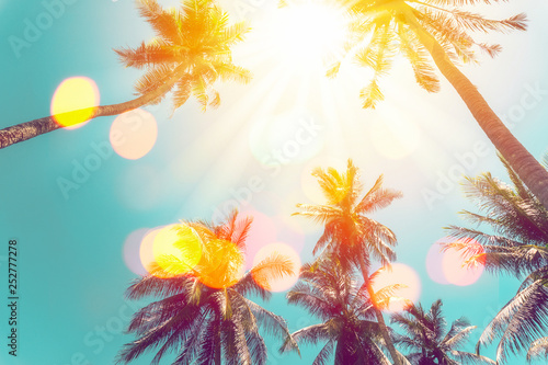 Photo sur Aluminium Arbre Tropical palm tree with colorful bokeh sun light on sunset sky cloud abstract background.