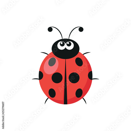 Photo  Cute ladybug icon