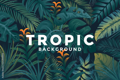 Photo Tropical background with jungle plants