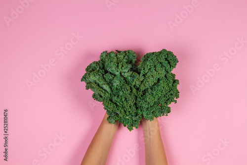 Fotografia  Hands holding a bunch of kale leaves over pastel pink background
