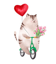 Cute Watercolor Cat Riding Bic...