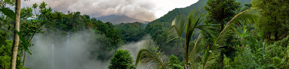 Fototapeta Las Aerial over Sekumpul waterfall surrounded by dense rainforest and mountains shrouded in mist at sunrise, Bali, Indonesia panoramic