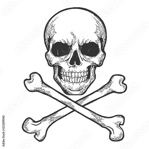 Photo  Skull with crossed bones