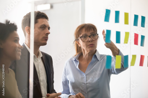 Middle aged businesswoman explaining project strategy on sticky notes