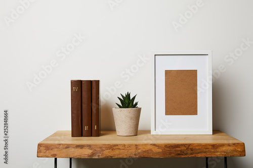 books near cactus in pot and frame on wooden table