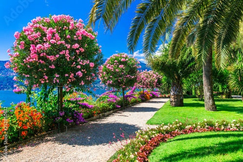 "Lake Lago Maggiore - beautiful ""Isola madre"" with ornamental floral gardens. North of Italy - Buy this stock photo and explore similar images at Adobe Stock 