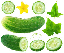 Isolated Cucumber Collection. Whole And Cut Cucumber, Flower And Leaves Isolated On White Background With Clipping Path