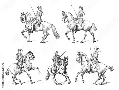 Tableau sur Toile Equestrianism (horseback riding) / vintage illustration from Meyers Konversation