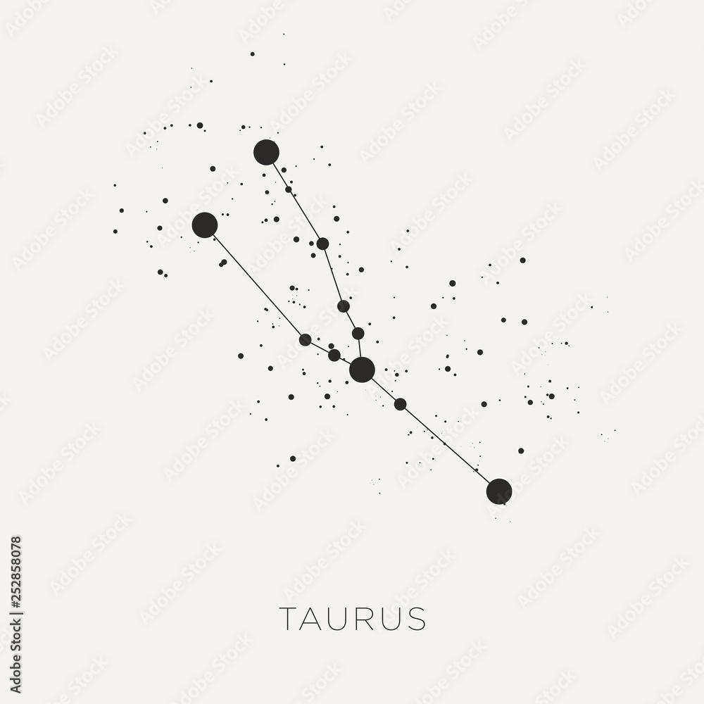Fototapeta Star constellation zodiac taurus black white vector
