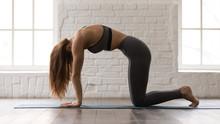 Beautiful Woman Practicing Yoga, Standing In Cat Pose, Marjaryasana Exercise