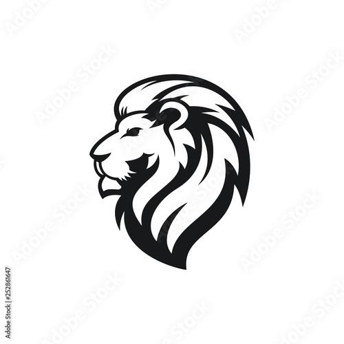 Fototapety, obrazy: lion logo design