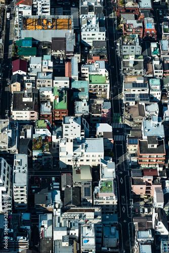 Fototapeta Tokyo high dense houses and buildings obraz na płótnie