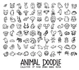 Fototapeta Fototapety na ścianę do pokoju dziecięcego - Set of animal icons Drawing illustration Hand drawn doodle Sketch line vector eps10