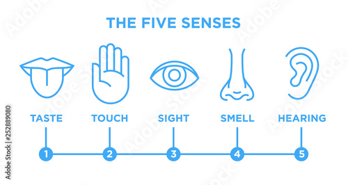 Foto  The five human senses icons set with nose for smell, tongue for taste, hand for touch, eye for sight and ear for hearing