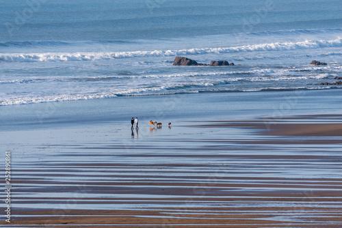 Fotomural Widemouth Bay, Cornwall, England, UK