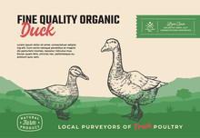 Fine Quality Organic Poultry. Abstract Vector Meat Packaging Design Or Label. Modern Typography And Hand Drawn Duck With Goose Silhouettes. Rural Pasture Landscape Background Layout With Banner