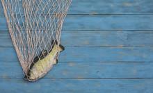 Fishing Net On A Blue Wooden