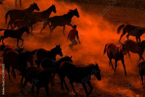 Spoed Fotobehang Kameel horses and people