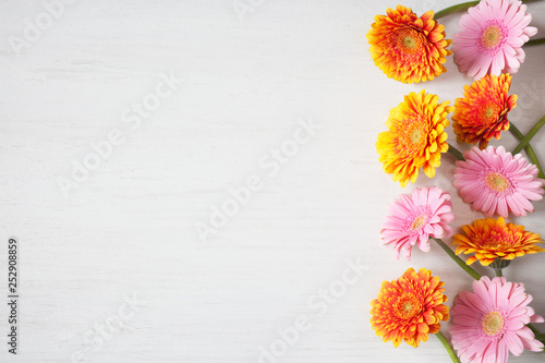 Door stickers Gerbera Background festive for congratulations with flowers gerberas