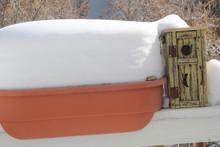 Winter Bird Box