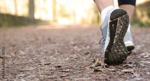 Gambe uomo con scarpa da corsa che corre nel parco Canvas Print