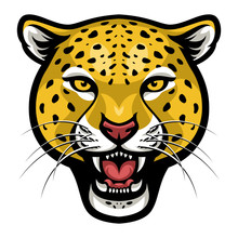 Angry Cheetah Face Vector