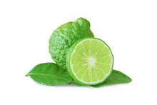 Bergamot Kaffir Lime Isolated ...