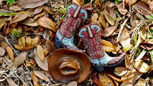 Pair Of Cowboy Boots And Hat L...