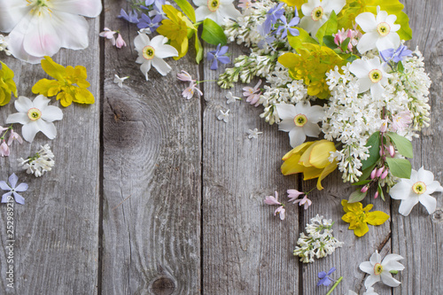 Cadres-photo bureau Narcisse spring flowers on wooden background