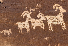 Ute Rock Art
