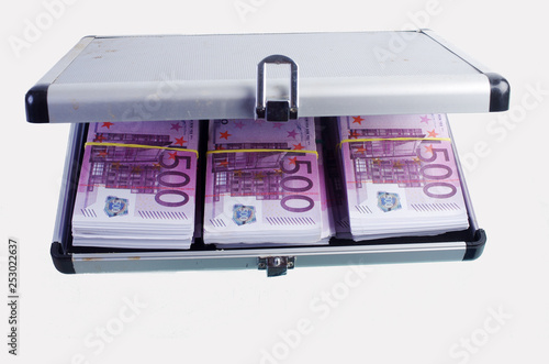 Fotografie, Obraz  Case with bundles of money on a white background