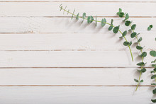Branches Of Eucalyptus On White Wooden Background