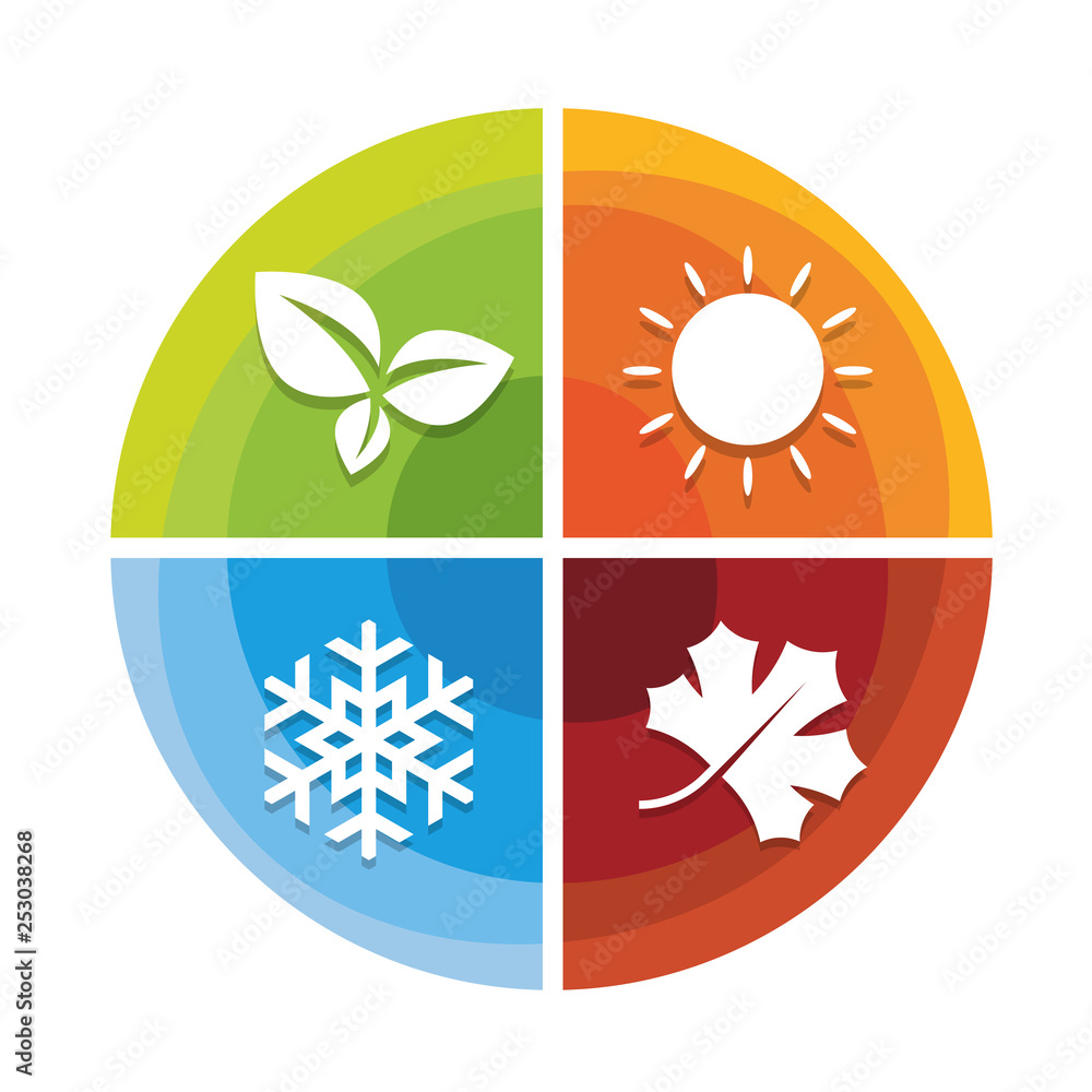 Fototapeta 4 season icon in circle diagram chart  with leaf spring  , sun summer , snow winter and Maple leaf autumn vector design