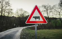 Image - Cow Traffic European Sign (red Triangle) With Curved Road, Green Meadow And Field On Background On Sunset. Beware Of The Cow. A Warning Sign With Cattle On European Road Symbol.