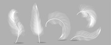 White Feathers Set Vector. Ins...