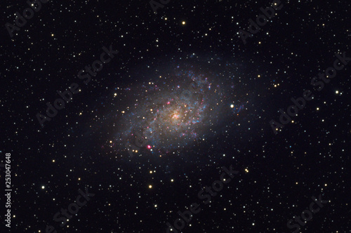 Messier 33 Triangulum galaxy in the constellation Triangulum Canvas-taulu