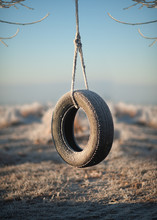 Solitary Tire Swing